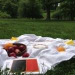 picnic in park