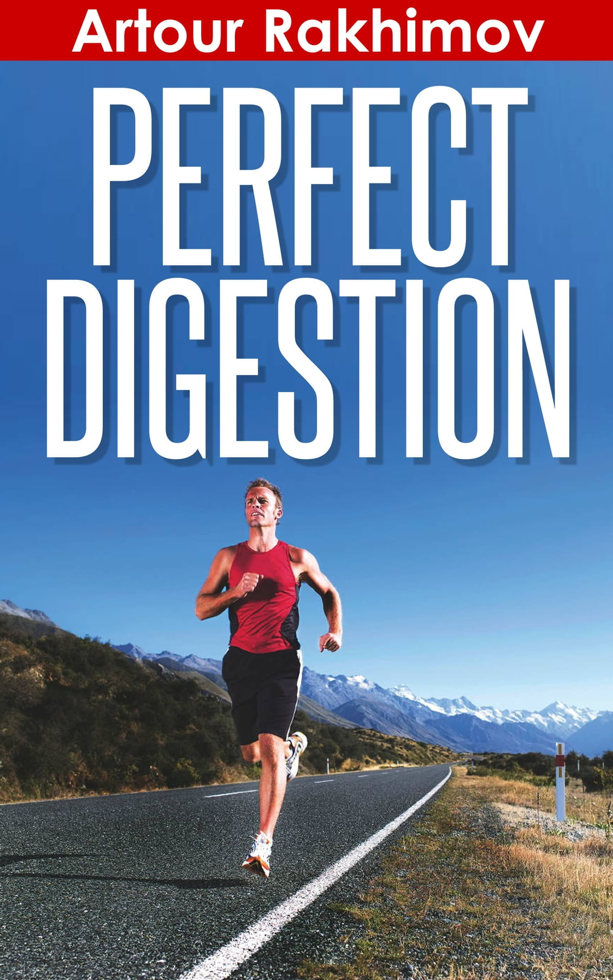 Fitness Lifestyle Wangen Perfect Digestion Ebook By Artour Rakhimov Rakuten Kobo