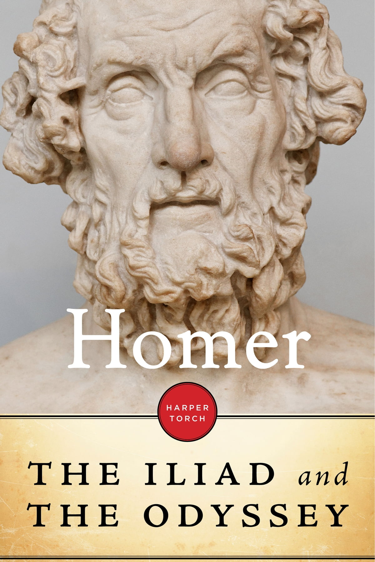 Iliad Homer Iliad And Odyssey Ebook By Homer Rakuten Kobo