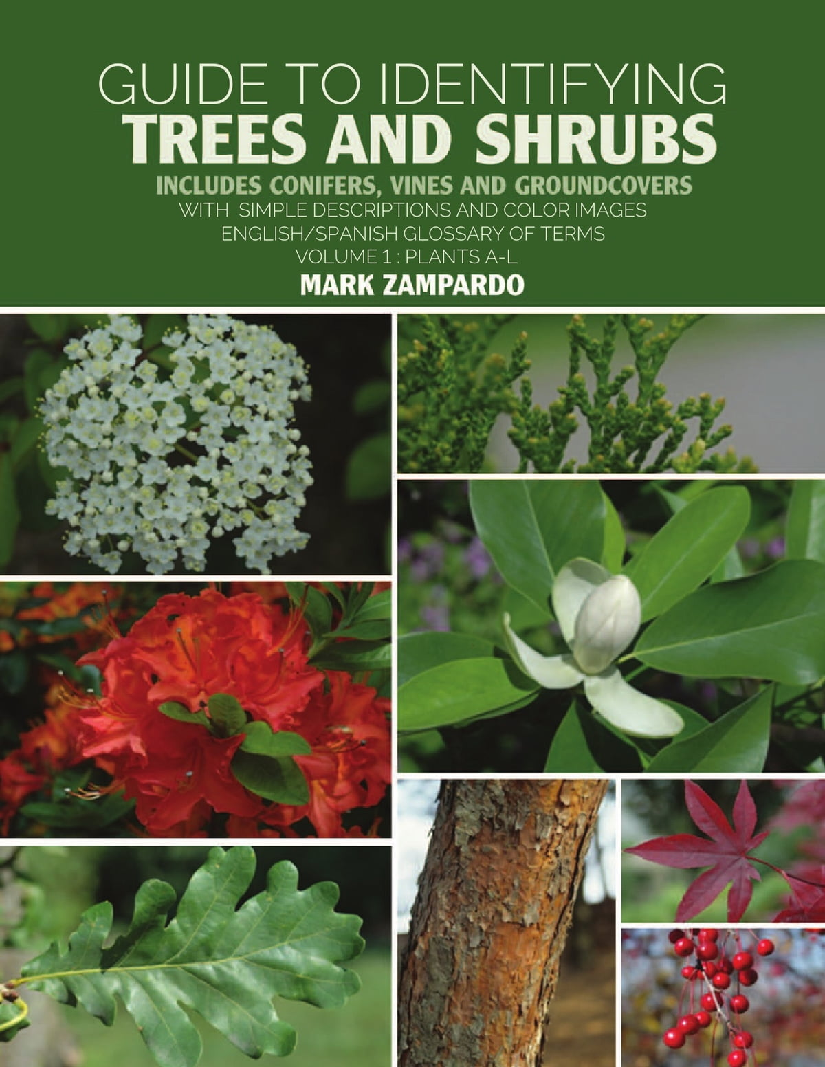 Trees And Shrubs Guide To Identifying Trees And Shrubs Plants A L Ebook By Mark Zampardo Rakuten Kobo
