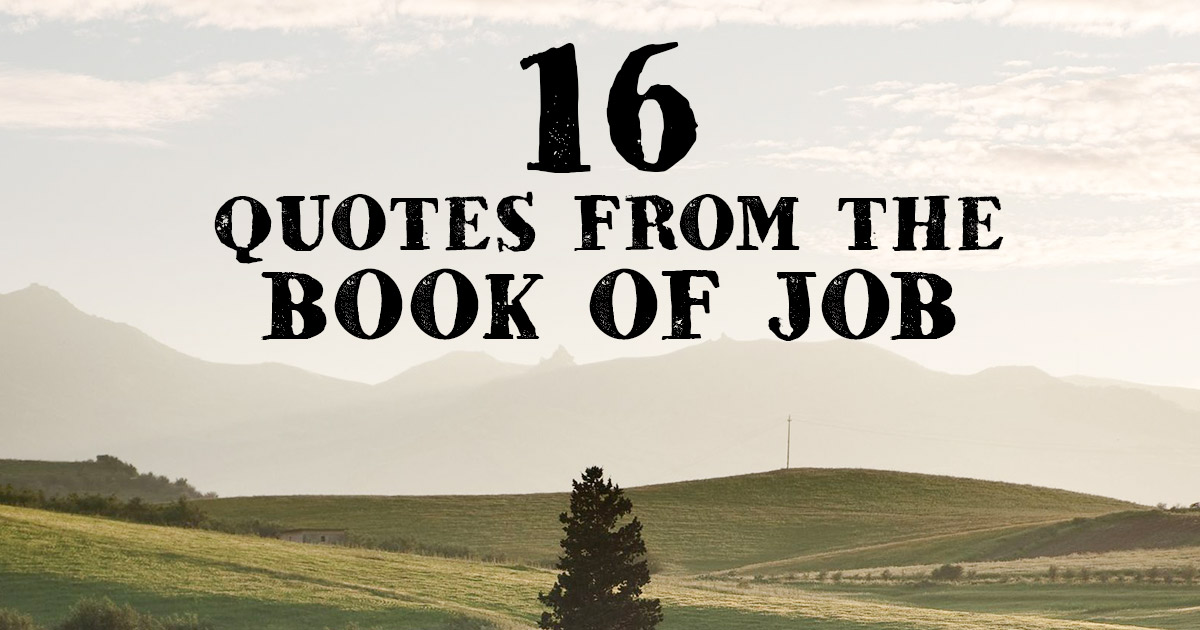 16 Quotes From The Book Of Job \u2013 Famous Bible Scriptures