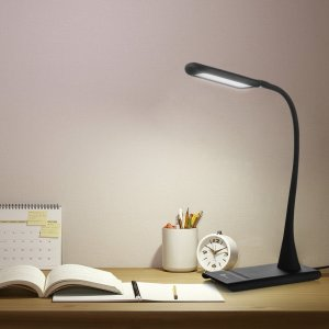 chollo lampara 1