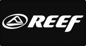 chollo reef