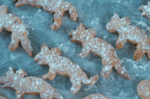 No dinosaurs were harmed in the making of these cranberry and pistachio treats.
