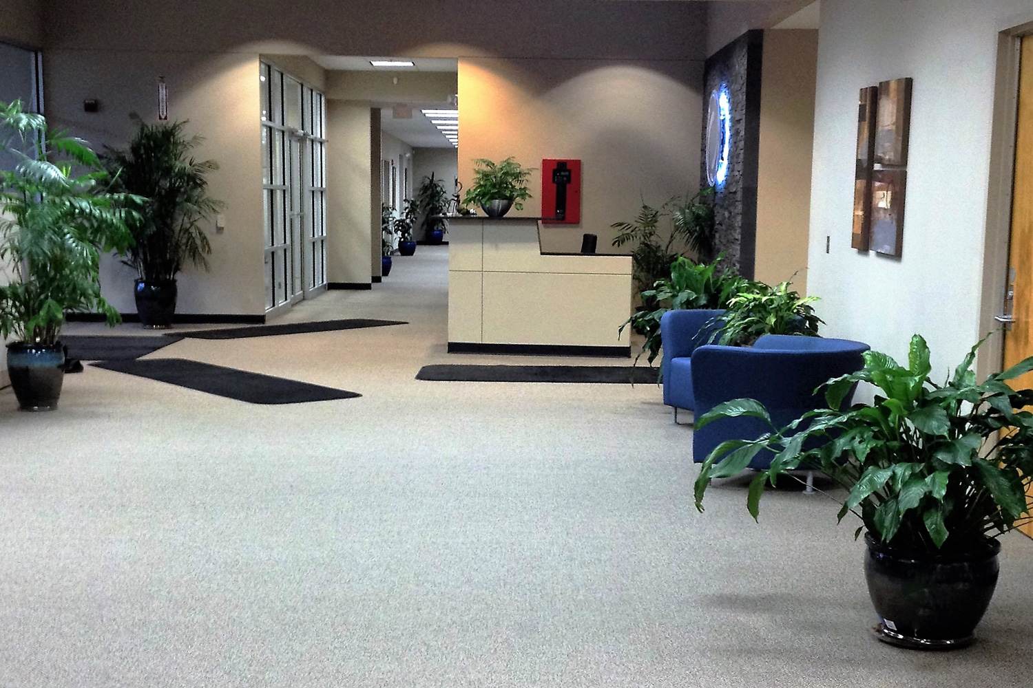 Indoor Plants For The Office Indoor Tropical Plants For Offices Interior Landscaping Company