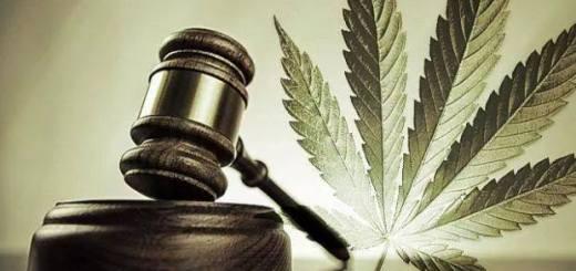Justiz und Hanf