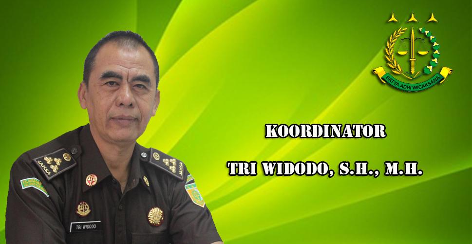 koordinator-tri-widodo