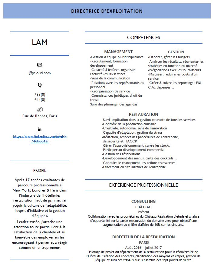 experiences professionnelles marketing cv