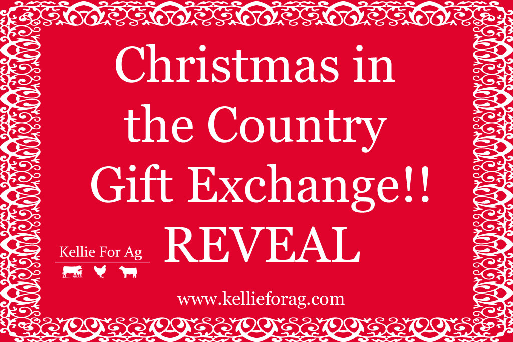 Christmas in the Country Gift Exchange! -- Reveal