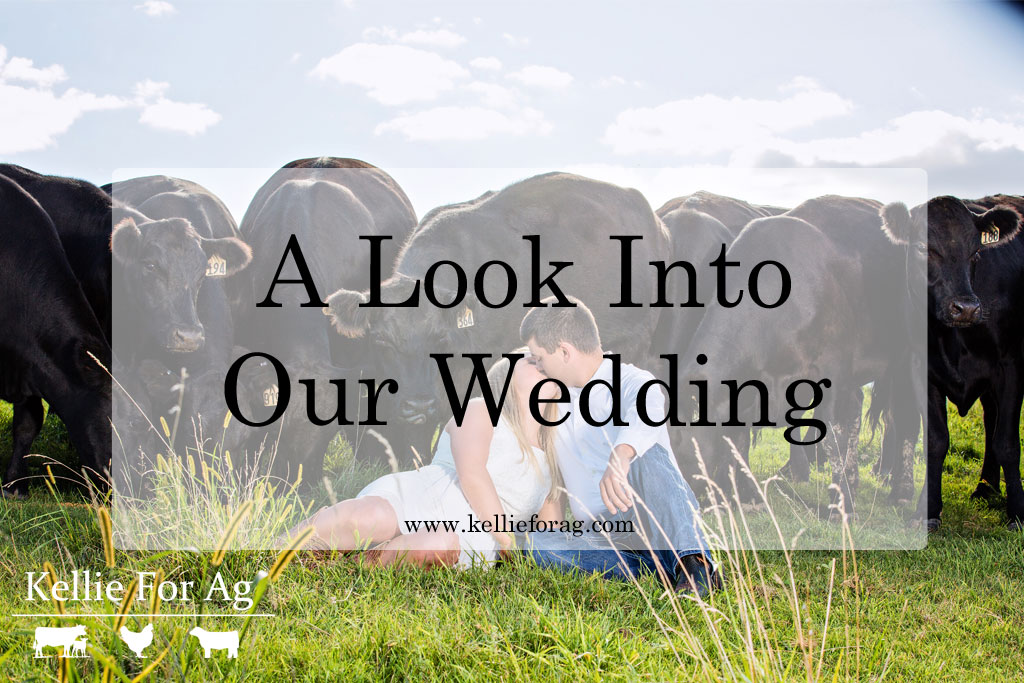 A Look Into Our Wedding