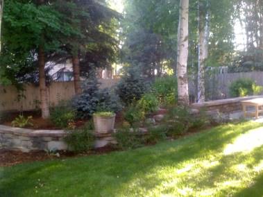 04-backyard-02