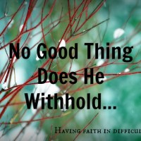 No Good Thing Does He Withhold - Part 2