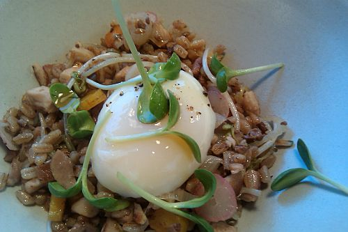 Slow Cooked Egg