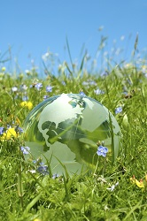 vernal, spring, hope, globe, opportunity