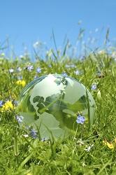 vernal, spring, hope, globe, opportunity