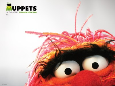 """Muppet Madness: A Review for """"The Muppets"""""""