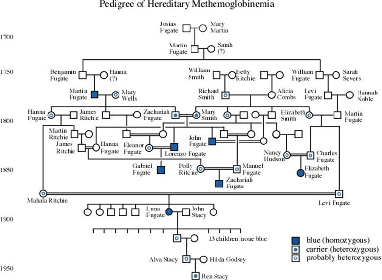 family-treejpg (780×572) Genealogy Pinterest - great objective for resume