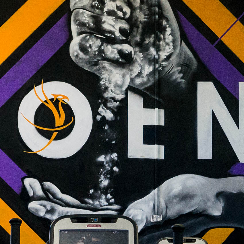 Phoenix Health Club Mural
