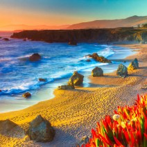 Sonoma-Coast-Landscape-Kevin-Kowalewski-3