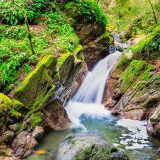 Waterfall at Sugarloaf Ridge State Park