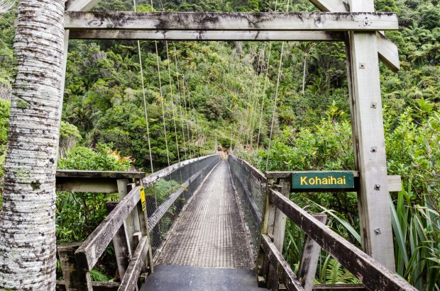 Bridge over Kohaihai river, Heaphy Track