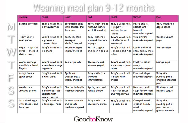 Baby food meal planner 9 - 12 months