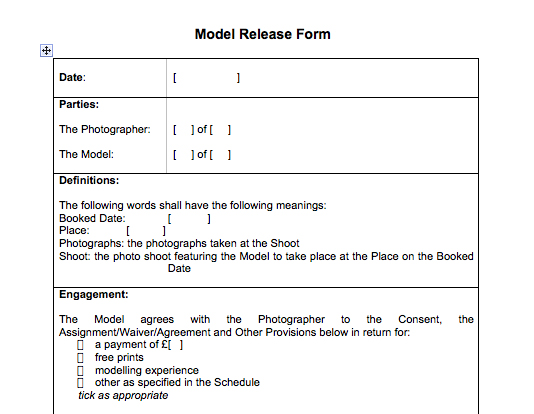 Privacy concerns lead RPS to launch free to download model release - model release form in pdf