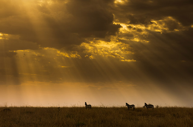 National Geographic Wallpaper Fall Some Of The Spectacular Images By Photographers Vying For