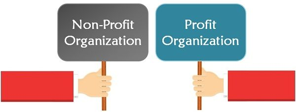 Difference Between Profit and Non-Profit Organisation (with and - profit & loss template free