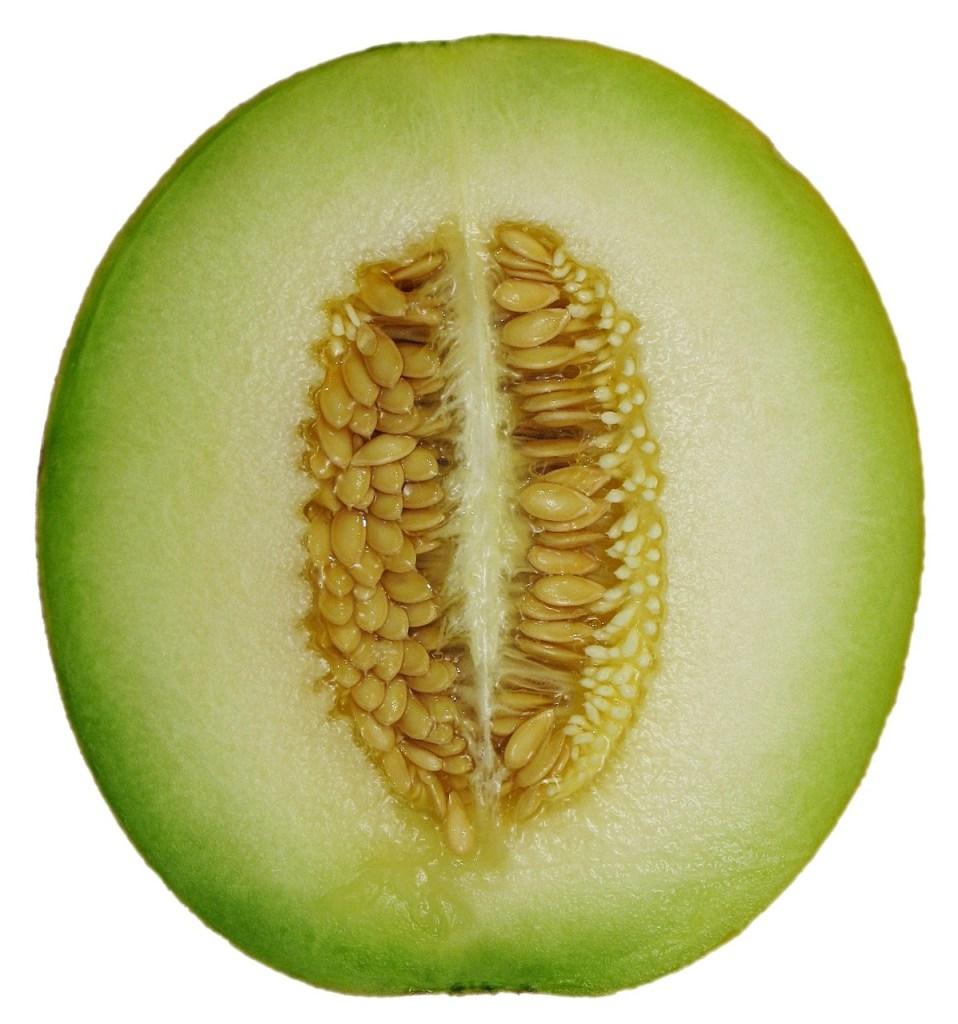 Cool Melon