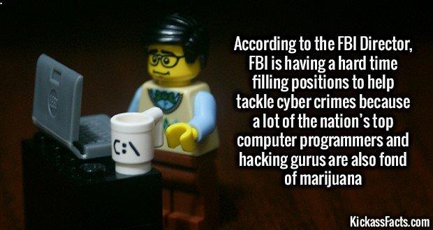 1222 Programmers Smoking Marijuana
