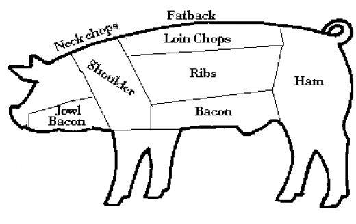 parts of a pig diagram