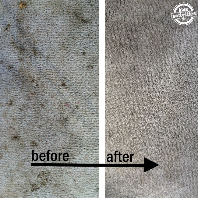 2 Ingredient Carpet Stain Cure