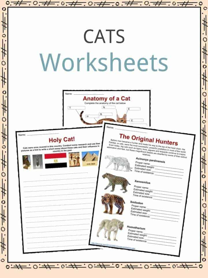 diet worksheets