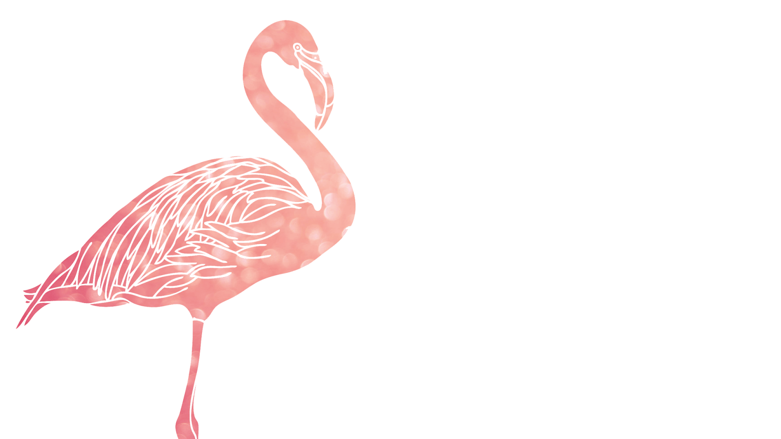 Cute Girl Wallpaper For Laptop Flamingo Pictures Kids Search
