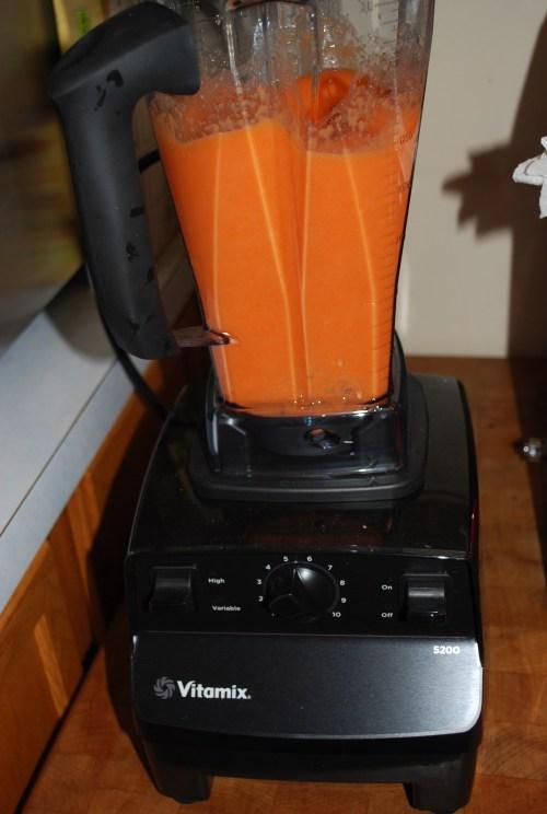 Medium Of Vitamix 5200 Costco