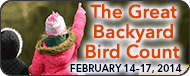 The Great Backyard Bird Count- Kid World Citizen