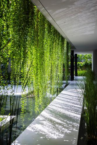 Lối đi với dải cây leo đồng thời là ngôn ngữ kiến trúc đặc trưng của Naman Spa - Ảnh(c)Hirouyki Oki