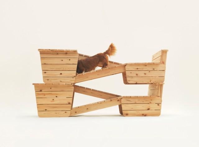 """Ý tưởng """"Architecture for Dogs"""" – Hãy thân thiện với chú chó của bạn"""
