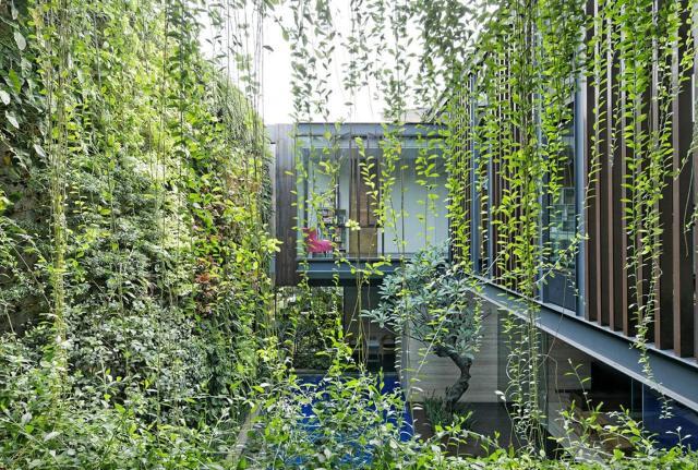 Ben House là ngôi nhà 3 tầng với 800 m2 sử dụng nhà xây dựng trên nền đất 400 m2.