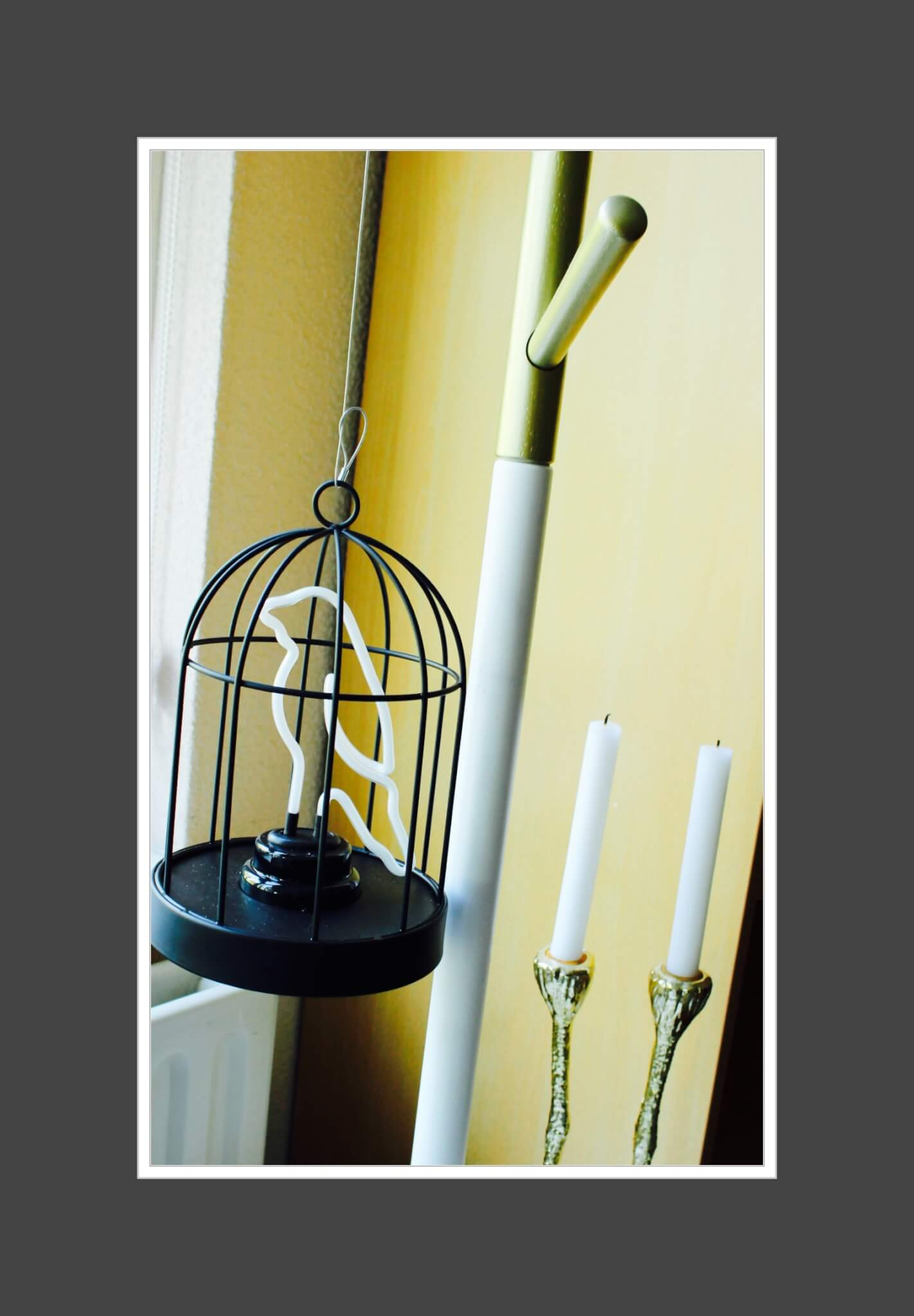 Neon Buis Verlichting Bird Cage Lamp Is It A Bird Is It A Plane No It Is A Bird Cage