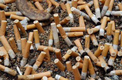 Photo of a pile of cigarette butts next to the road.