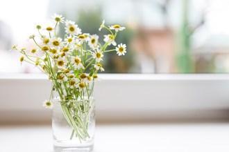 kitchen-essentials-spring-kim-deon
