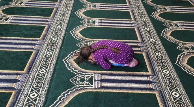 Moscheebesuch der bunten und schwarzen Fledermäuse