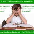 A kineziológia, ezen belül is kifejezetten az edu-kineziológia módszere, hatékony és gyors támogató eszköze gyermekeink egészséges fejlődésének, a tanulási folyamatok, a testi-lelki-elmei koordinációs folyamatoknak. A tanulási nehézséggel és/vagy magatartásbeli, viselkedési […]