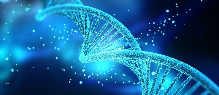 Our DNA has Memory