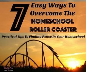 7 Easy Ways To Overcome The Homeschool Roller Coaster