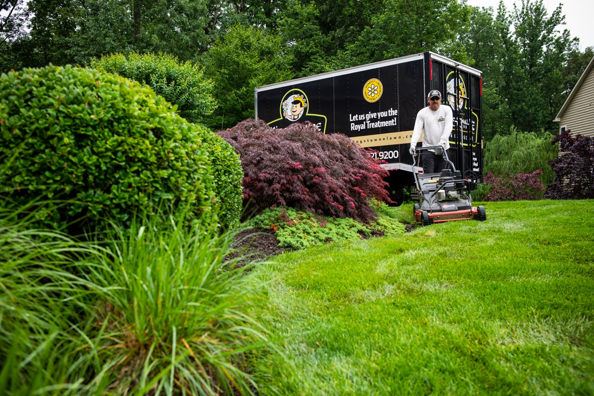Landscaping Company The 4 Best Landscaping Companies In Alexandria Arlington And