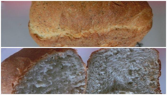 モリンガ 出がらし パン