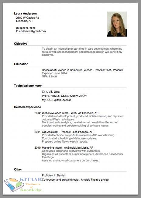 good cv examples for first job in india